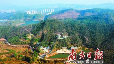 东莞推动绿色攻坚,再塑城市品质