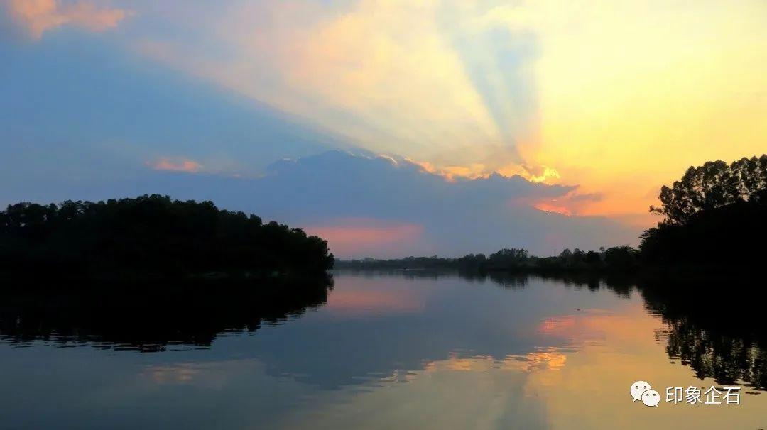 总投资1.96亿元!企石将新添一个湿地公园,预计今年完工!